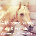 A Mustang Named Folly & Friends