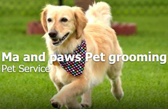 Ma and Paws Pet Grooming