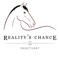Reality's Chance Rescue & Sanctuary