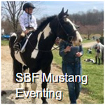 SBF Mustang Eventing