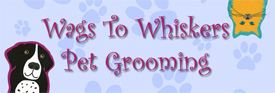 Wags To Whiskers Pet Grooming